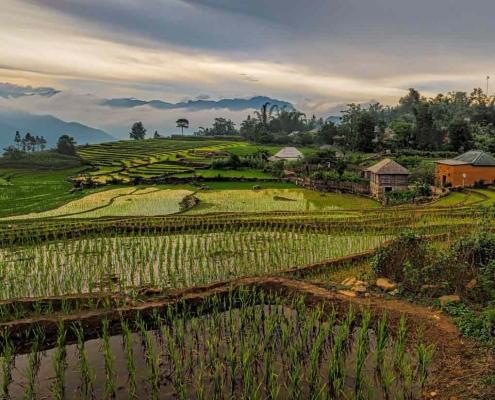 Vietnam Kaffee