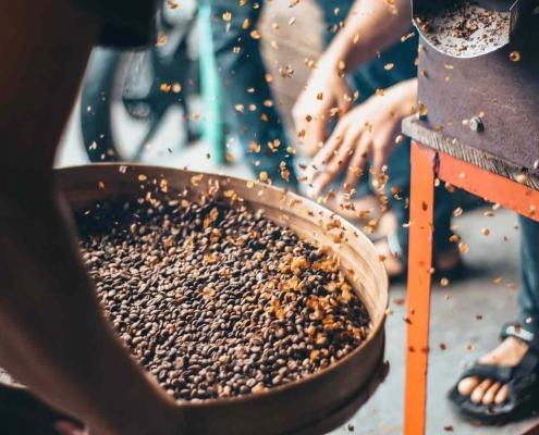 Kaffeeproduktion